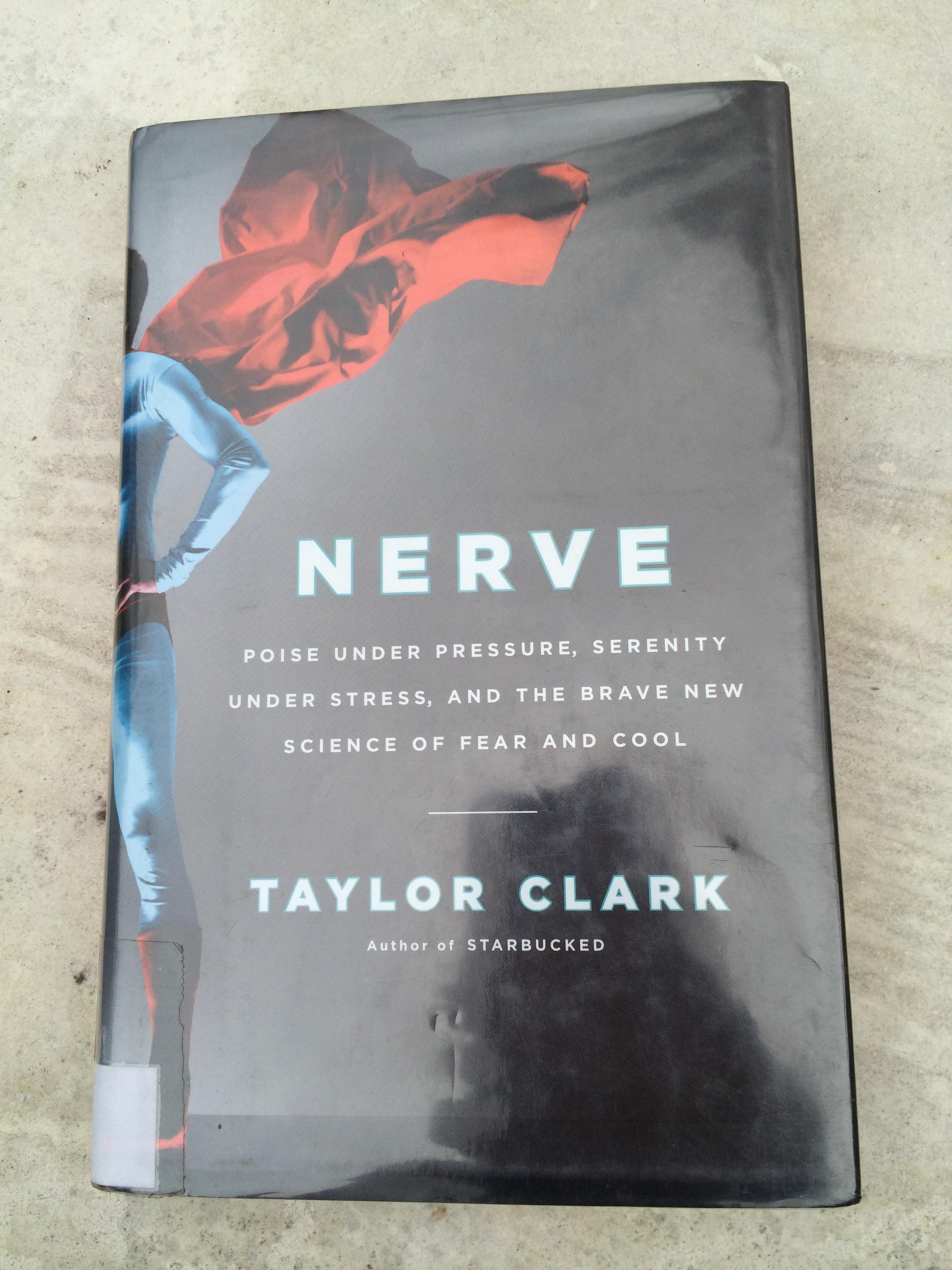 "Nerve"" – A BigPig Book Review (7/10)… | BigPig Blog"